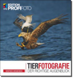 Tierfotografie - Der richtige Augenblick